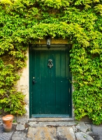 Green door w ivy