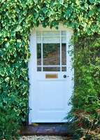 white door with ivy